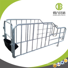 Pig Farm Equipments for Pig Farrowing Gestation Stall